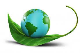 globe and leaf
